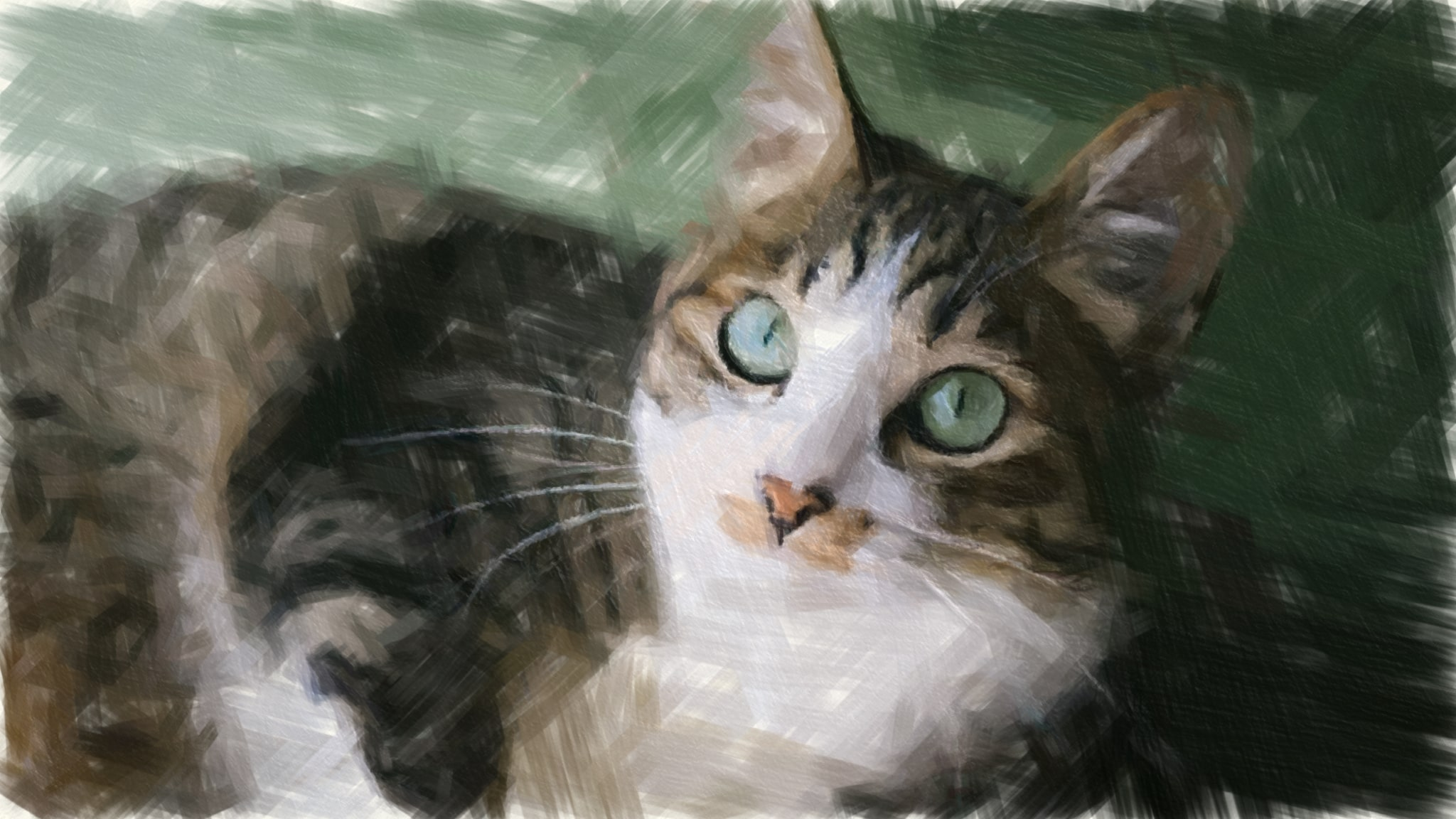 猫の写真のOil描写