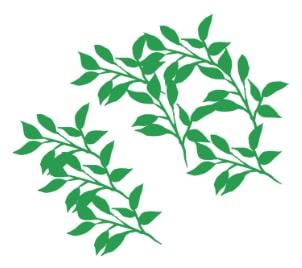 枝葉ブラシ