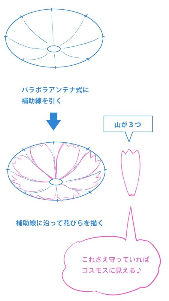 補助線を引いて花びらを描く