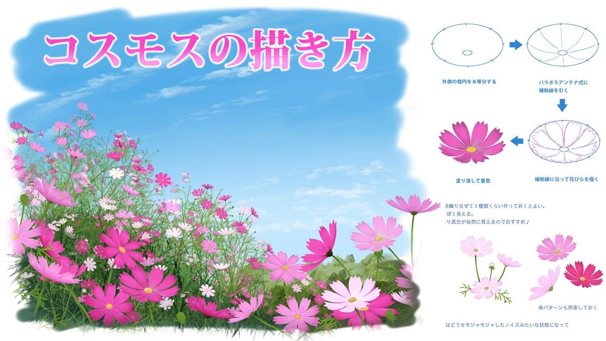 【秋の花】コスモスのイラストの描き方!花の特徴やブラシの作り方を解説