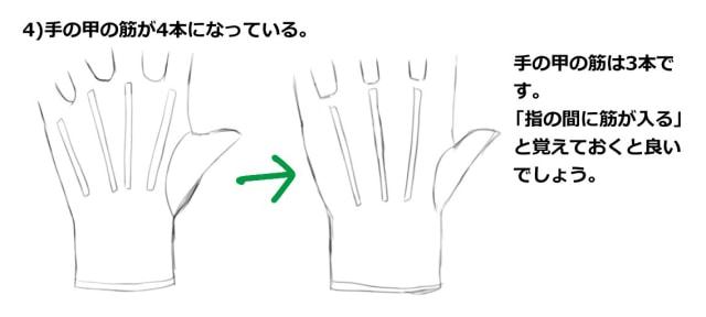 手の甲の筋が4本